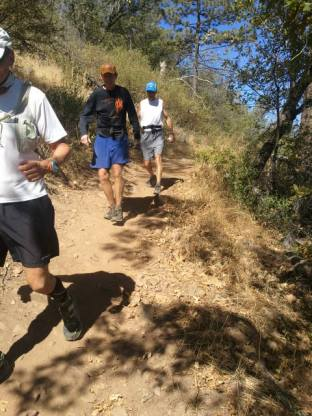 Runners leaving the highest point on the course as they approach Penny Pines.
