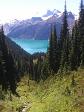View of Garibaldi Lake.