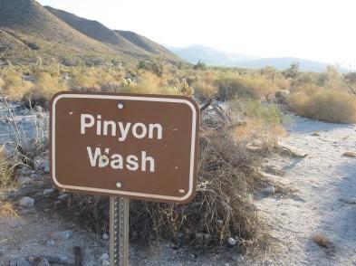 Pinyon Wash, startline.