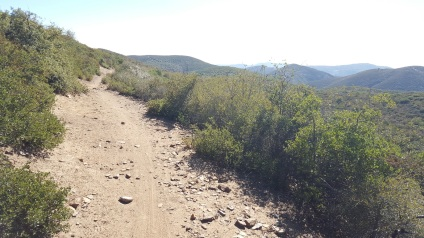 Fun trails with great views.