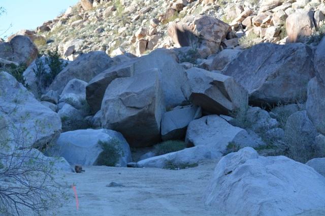 LB50_tr_Boulders